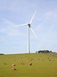 Large single wind turbine owned by Ecotricity at Shooter's Bottom, Chewton Mendip, Somerset, England operational since 2008 with 2 MW capacity.