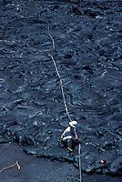 Telephone repair woman working on lines in hardened lava. Kalapana, Big Island