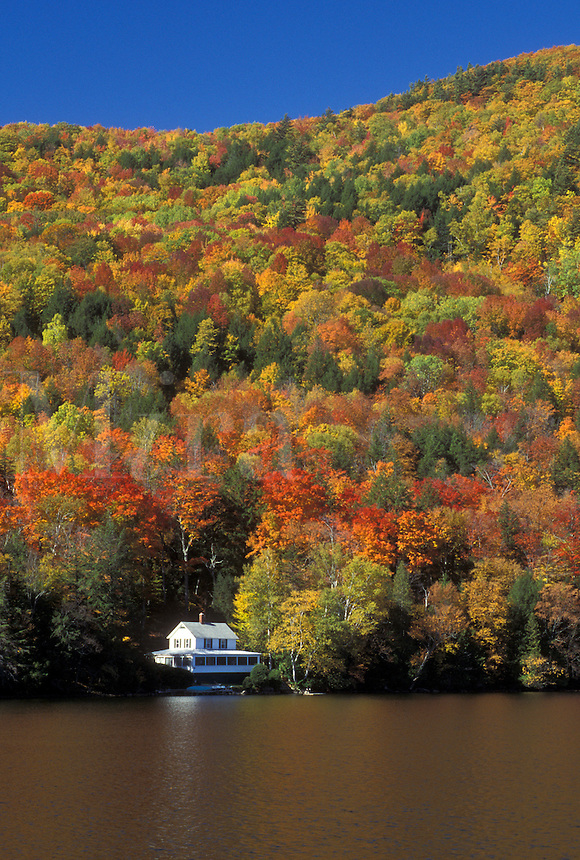 lake, cabin, fall, Barnet, VT, Vermont, Summer cottage surrounded by colorful fall foliage on Harveys Lake in the autumn.