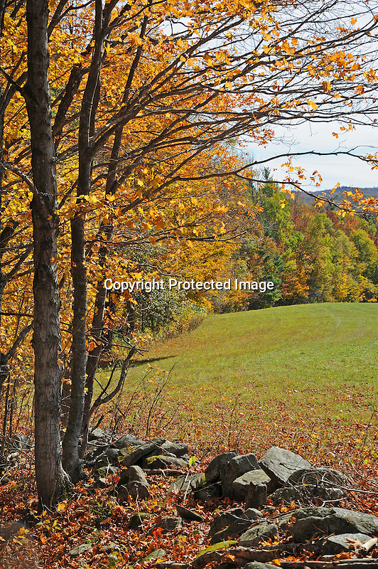 View of Distant Hills and Pasture during Fall Season in Rural Alstead, New Hampshire USA