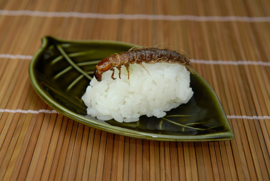 "Dobsonfly larva sushi. Tokyo resident Shoichi Uchiyama is the author of ""Fun Insect Cooking"". His blog on the topic gets 400 hits a day. He believes insects could one day be the solution to food shortages, and that rearing bugs at home could dispel food safety worries."