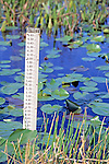 Water Level Measuring Stick