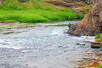 Atlantic Salmon Catch and Release Fly Fishing in Iceland. Fly fisherman in Svarta river