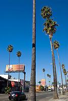 Sunset Blvd., Los Angeles, California