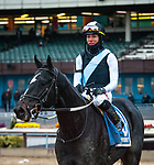 January 1, 2020: Independence Hall, ridden by Jose Ortiz, wins the 2020 running of the Jerome Stakes at Aqueduct Racecourse in South Ozone Park, NY on January 1, 2020. Sophie Shore/ESW/CSM