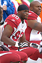BRYANT JOHNSON, of the Arizona Cardinals, in action during their game against the Cincinnati Bengals on November 18, 2007 in Cincinnati, Ohio...Cardinals win 35-27..SportPics