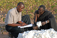 TANZANIA Meatu, organic cotton project biore of swiss yarn trader Remei AG , farmer and field advisor cotton harvest
