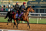 October 30, 2019: Breeders' Cup Juvenile Turf Sprint entrant Air Force Jet, trained by Joseph O'Brien, exercises in preparation for the Breeders' Cup World Championships at Santa Anita Park in Arcadia, California on October 30, 2019. Scott Serio/Eclipse Sportswire/Breeders' Cup/CSM