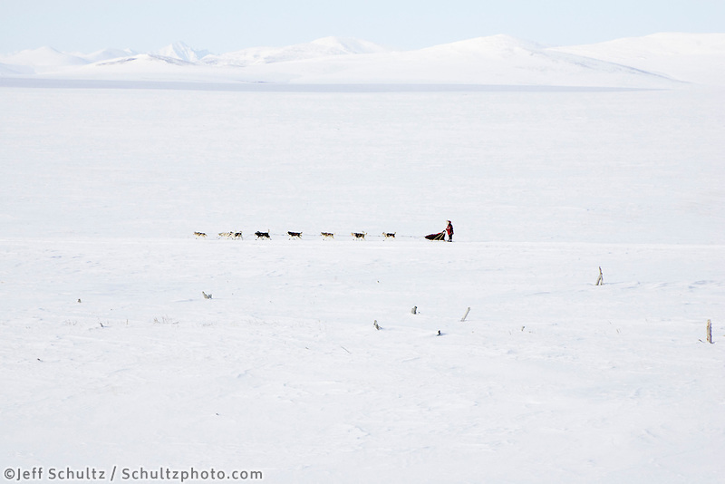 Karen Ramstead nears Saftey on Friday afternoon during Iditarod 2008