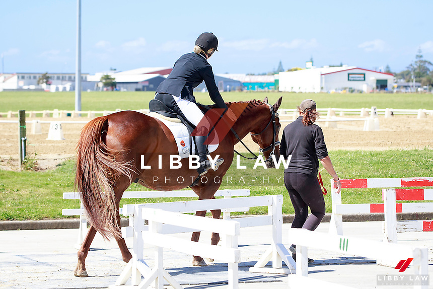NZL-Chontelle Honour rides Letz Danse in the Boeckmann Horsefloats II Para-Equestrian Championship Test. FINAL-1ST. 2017 NZL-Bates NZ Dressage Championships. Manfeild Park, Feilding. Friday 3 February. Copyright Photo: Libby Law Photography