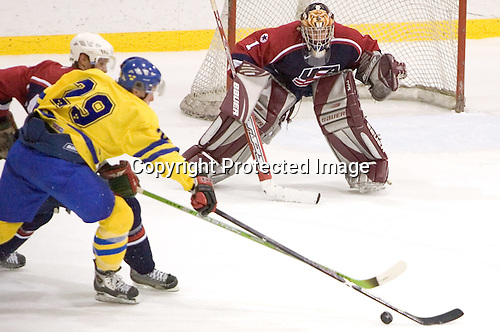 (AJ Thelen, Erik Andersson) Jonathan Quick (University of Massachusetts-Amherst - Los Angeles Kings)  The US Blue team defeated Sweden 8-2 in the NHL Rink at Lake Placid, NY on August 10, 2005 as part of the National Junior (U-20) Evaluation Camp and Summer Challenge.