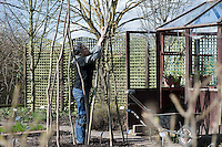 BBC Gardening Website - Garden Organic Ryton (4th March 2009)