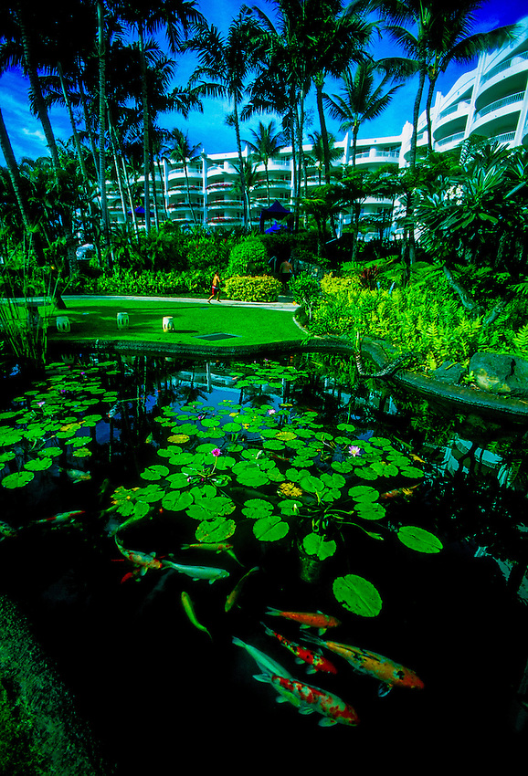 Koi pond, Fairmont Kea Lani Hotel, Wailea, Maui, Hawaii