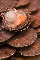 "Europe/France/Ile-de-France/75014/Paris : la ""Poissonnerie du Dôme"" Coquilles Saint Jacques à l'étalage"