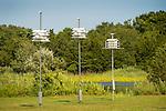 Hammonasset Beach State Park, CT. Martin birdhouses.