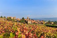 France, Rhône (69), région du Beaujolais, Theizé , le village et  vignoble en automne // France, Rhone, Beaujolais region, Theize, the village and the vineyards in autumn