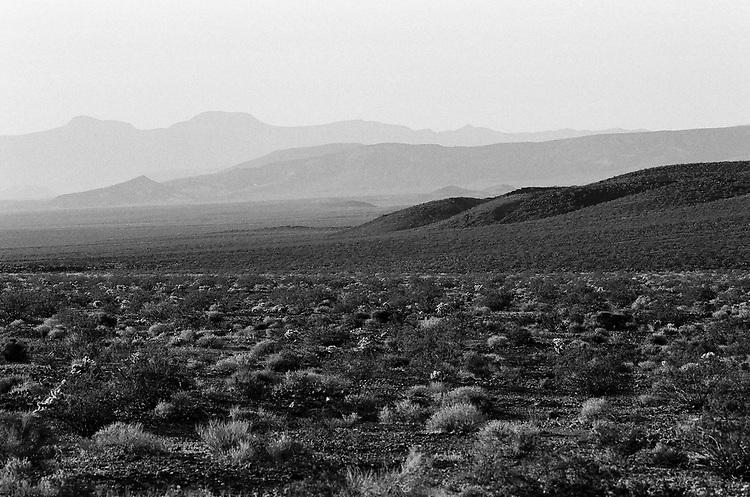 Death Valley, Morning Light, Spring 2018, 35mm Film