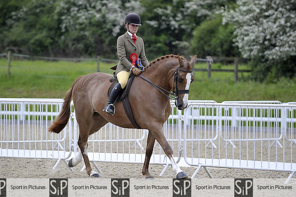 The BSPS and Area 15 Intermediate Championship. BSPS Area 15 Showing. Brook Farm Training Centre. Essex. 22/05/2016. MANDATORY Credit Garry Bowden/Sportinpictures - NO UNAUTHORISED USE - 07837 394578