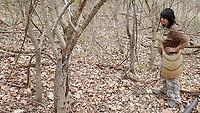 NWA Democrat-Gazette/FLIP PUTTHOFF <br />Melissa Nichols scans the forest floor    April 13 2018    for morel mushrooms.