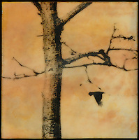 Mixed media photography of bare tree with bird in sunset sky in oranges