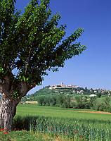 ITA, Italien, Marken, Dorf Montecassiano bei Macerata | ITA, Italy, Marche, village Montecassiano near Macerata