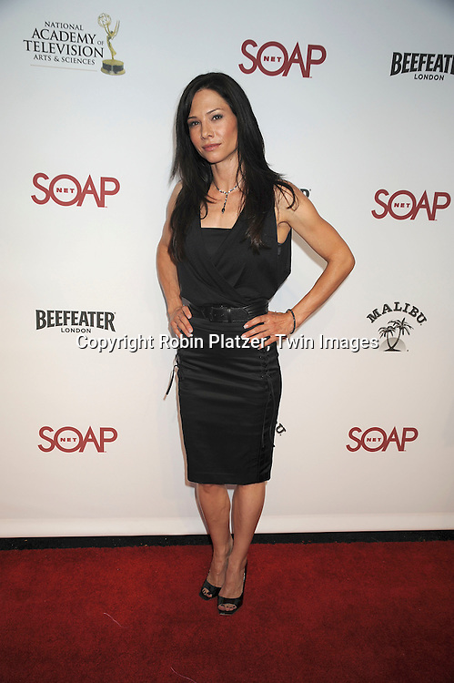 """Sarah Brown..at SOAPNET'S """" Night Before Party"""" for the 2008 Daytime Emmy Award Nominees at Crimson and Opera in ..Hollywood, California on June 19, 2008.....Roibn Platzer, Twin Images"""