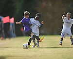Lobos Rush Azul vs. Soccer ole U9 Yellow at the Mike Rose Soccer Complex in Memphis, Tenn. on Sunday, November 17, 2013.