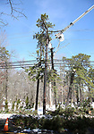 Forestry Crews work on downed trees resting on utility lines after a snowstorm Anderson Ave. in Jackson, New Jersey.
