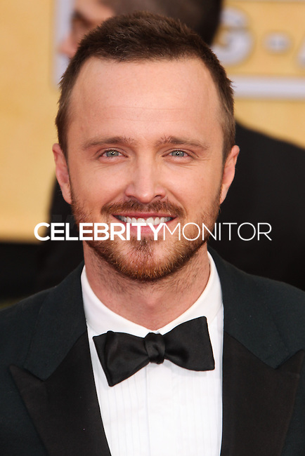 LOS ANGELES, CA - JANUARY 18: Aaron Paul at the 20th Annual Screen Actors Guild Awards held at The Shrine Auditorium on January 18, 2014 in Los Angeles, California. (Photo by Xavier Collin/Celebrity Monitor)