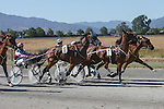 Summer Festival Harness Racing. Friday 23 January 2015. Blenheim, New Zealand. Photo: Ricky Wilson/www.shuttersport.co.nz