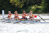 Race: 121  W.MasC.4x  Mortlake Anglian & Alpha Boat Club vs Lea Rowing Club<br /> <br /> Henley Masters Regatta 2019 - Friday<br /> <br /> To purchase this photo, or to see pricing information for Prints and Downloads, click the blue 'Add to Cart' button at the top-right of the page.