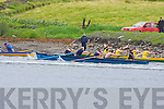 Crews competing in the senior mens race at the Caherciveen regatta on Sunday   Copyright Kerry's Eye 2008