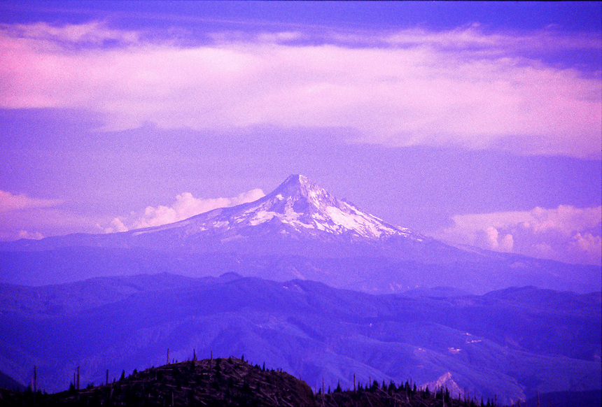 Mt. Hood from Windy Ridge, Mt. St. Helens National Volcanic Monument, Washington, US