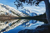 Jenny Lake reflections, Grand Tetons National Park