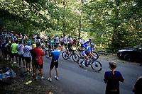 over the last climb of the day: the Côte de cinq chateaux<br /> <br /> Stage 5: Saint-Dié-des-Vosges to Colmar(175km)<br /> 106th Tour de France 2019 (2.UWT)<br /> <br /> ©kramon