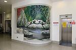 HSE Mural