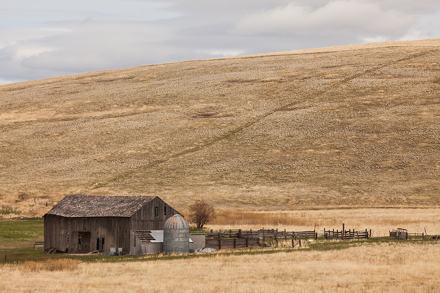 An old wooden barn and small silo are seen along the Carter Hill Road in Gilliam County, Oregon