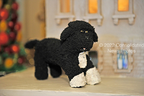 Detail of the likeness of Bo, the First Family's Portuguese Water Dog, which is on the exterior of the White House Gingerbread House, part of the 2012 White House Christmas decorations, on display in the State Dining Room in Washington, DC on Wednesday, November 28, 2012.  It is constructed with over 175 pounds of gingerbread and modified gingerbread.  The 300 pound (136.1kg) house contains 50 pounds (22.7kg) of chocolate.  A combination of wheat, rye, and white-flour gingerbread mimic the color of the original sandstone that was painted white in 1798..Credit: Ron Sachs / CNP