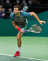 13-02-14, Netherlands,Rotterdam,Ahoy, ABNAMROWTT, Grigor Dimitrov(BUL)<br /> Photo:Tennisimages/Henk Koster