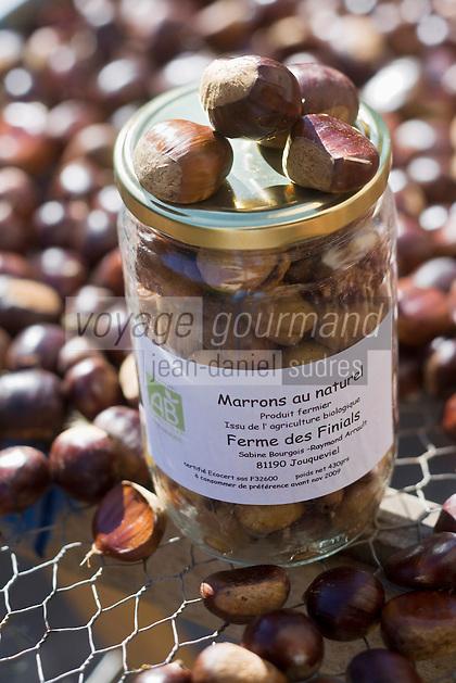 Europe/France/Midi-Pyrénées/81/Tarn/ Jouqueviel: Sabine Bourgeois trie  ses châtaignes qu'elle transforme  en crème de marrons ou en marrons au naturel- Produit de l'Agriculture biologique