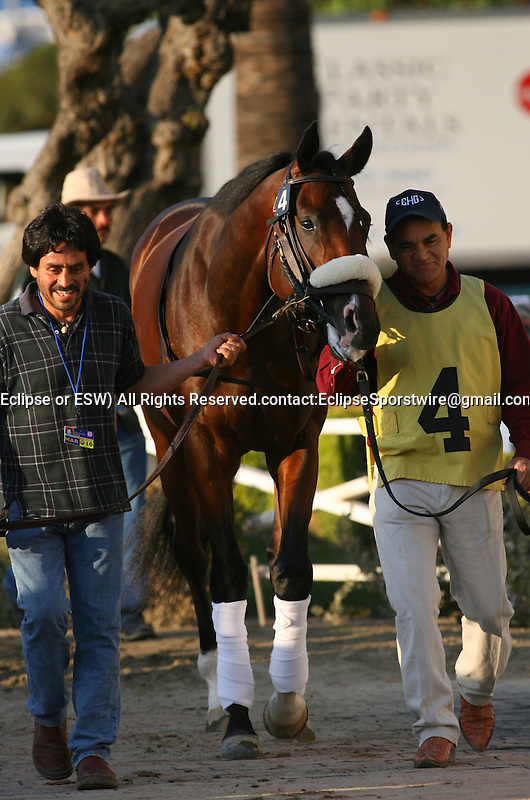 21 November 2009: American Lion and Julien Leparoux win the Hollywood Prevue Stakes (GIII) at Hollywood Park, Inglewood, CA.