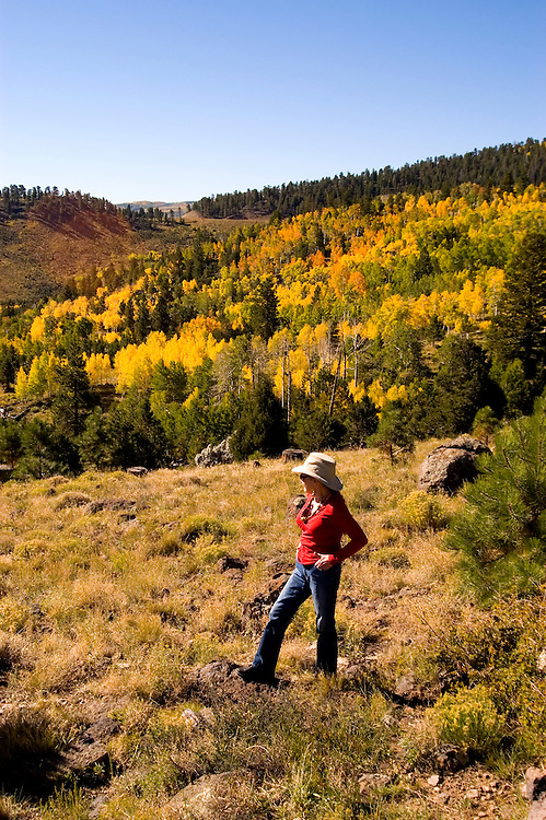 Woman amidst Golden Aspen leaves, aspen trees in fall, autumn, fall leaves, red, green, gold fall color, model released, Dixie National Forest, Utah, UT, Image ut333-18134, Photo copyright: Lee Foster, www.fostertravel.com, lee@fostertravel.com, 510-549-2202