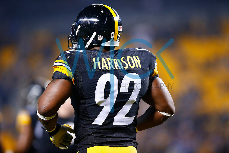 James Harrison #92 of the Pittsburgh Steelers in action against the Indianapolis Colts during the game at Heinz Field on December 6, 2015 in Pittsburgh, Pennsylvania. (Photo by Jared Wickerham/DKPittsburghSports)