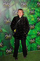 LONDON, ENGLAND - JANUARY 10: Guest attending 'Cirque du Soleil - OVO' at the Royal Albert Hall on January 10, 2018 in London, England.<br /> CAP/MAR<br /> &copy;MAR/Capital Pictures