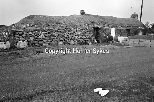 Milk delivery across the road from a traditional thatched stone  long house, Callanish, Isle of Lewis, Outer Hebrides, Highland and Islands Scotland 1974