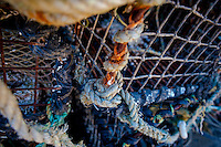 Friday  13  June  2014<br /> <br /> Pictured: Lobster Pots <br /> Re: Views of Llangrannog, Ceredigion, Wales UK