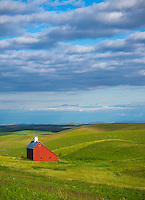 Latah County, Palouse Region, Idaho:<br /> Red saltbox style barn and rolling fields