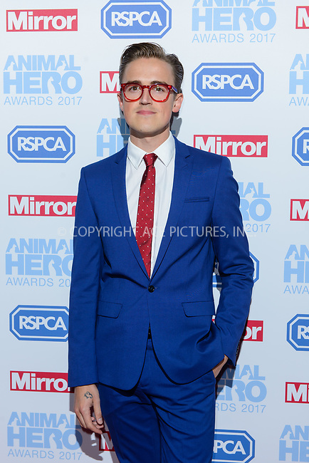www.acepixs.com<br /> <br /> September 7 2017, London<br /> <br /> Tom Fletcher attending the Animal Hero Awards 2017 on at the Grosvenor Hotel on September 7 2017 in London<br /> <br /> By Line: Famous/ACE Pictures<br /> <br /> <br /> ACE Pictures Inc<br /> Tel: 6467670430<br /> Email: info@acepixs.com<br /> www.acepixs.com