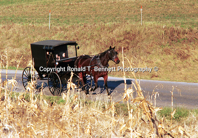 Horse and Buggy Amish family Commonwealth of Pennsylvania,  Commonwealth of Pennsylvania, Keystone state, Thirteen Colonies, Fine Art Photography by Ron Bennett, Fine Art, Fine Art photography, Art Photography, Copyright RonBennettPhotography.com © Fine Art Photography by Ron Bennett, Fine Art, Fine Art photography, Art Photography, Copyright RonBennettPhotography.com ©