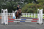27/08/2014 - Class 3 - Wednesday evening show jumping - Norton Heath EC